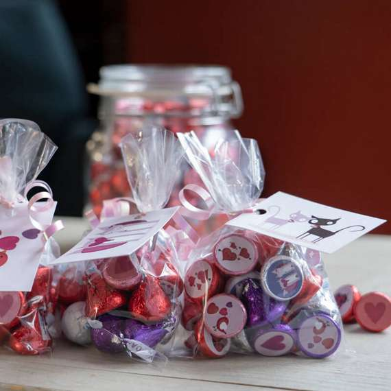 The Best Valentine's Day Candy Crafts and Goodie Bags For Kids